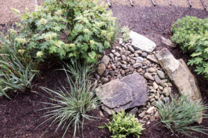 Implementation of a Bioretention Facility and Rain Garden Assessment Protocol